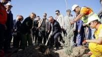ALİ FUAT ATİK - Siirt'te 123 Bin Fidan Toprakla Buluştu