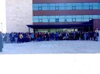 Sungurlu'da Üniversite Öğrencileri 200 Fidanı Toprakla Buluşturdu