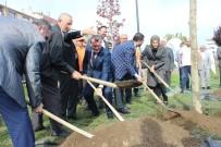 Zeytinburnu'nda 'Geleceğe Nefes' İçin Ağaç Dikildi