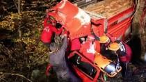 Bolu'da Tomruk Yüklü Kamyon Dere Yatağına Devrildi Açıklaması 2 Yaralı