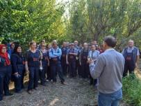 Büyükşehir Belediyesinden Üreticiye Uygulamalı Tarım Eğitimi