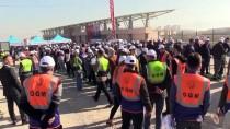 GUINNESS REKORLAR KITABı - Çorum'da 'Fidan Dikmede Dünya Rekoru' Sevinci