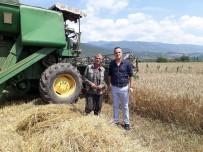 BÜYÜKBAŞ HAYVANLAR - Çiftçiye Devlet Desteği