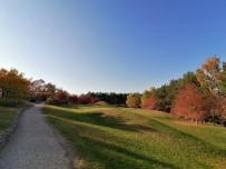 Kırşehir'de Japon Bahçesi, Doğal Güzelliğiyle Büyülüyor