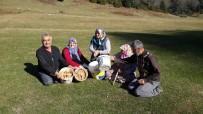 KANLıCA - Sakarya'da Güzel Havayı Değerlendiren Vatandaşlar Yaylada Mantar Topladı