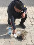 YAVRU KÖPEKLER - Zorda Kalan Sokak Hayvanlarını İtfaiye Ekipleri Kurtardı