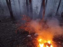 KARACAÖREN - Kastamonu'da 4 Hektarlık Ormanlık Alan Yandı