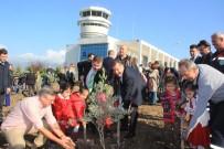Zeytin Fidanları Koca Seyit Havalimanı'nda Toprakla Buluştu