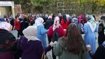 Diyarbakırlı Kadınlar Sonbahar Güneşinin Tadını Halayla Çıkardı