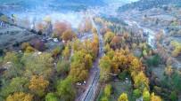 ABANT - Belemedik, Sonbaharda Renk Cümbüşüne Büründü