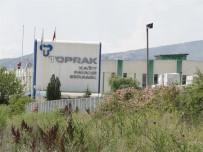 AÇIK ARTTIRMA - Toprak Seramik Fabrikası Tekrardan Satışa Çıkarıldı
