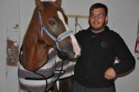 AT YARIŞI - Sandıklılı Rahvan Atçılar Türkiye Şampiyonasına Hazırlanıyor
