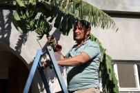Mezopotamya Ovasında Akdeniz İklimi Meyveleri Yetişmeye Başladı