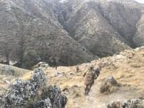 GÖKÇEBAĞ - Teröristler Tarafından Toprağa Gömülen Patlayıcı İmha Edildi