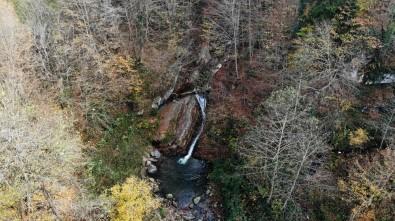 Trabzon'un Saklı Cenneti Açıklaması Kudavas Şelalesi