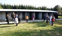 HAYVAN SEVGİSİ - Ara Tatildeki 600 Çocuk Doğal Yaşam Merkezini Ziyaret Etti
