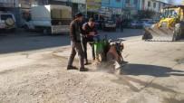 Tosya Belediyesi Revize Çalışmalarına Hız Verdi