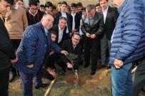 UĞUR TURAN - Başakşehir'de Fidanlar Öğretmenlere Emanet