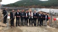 GÜNEŞ ENERJİSİ SANTRALİ - Bu İlçe Elektriğini Güneş Panellerinden Karşılıyor