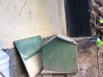 (Özel) Ataşehir'de Lüks Sitede Kedi Evi Tartışması