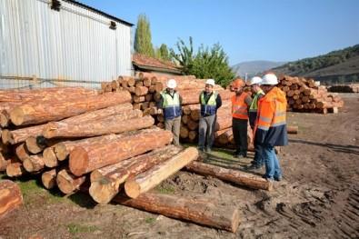 Bölge Müdürü Keskin, Orman Depolarında İncelemelerde Bulundu