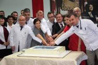 ONKOLOJİ HASTANESİ - Turgut Özal Tıp Merkezinde Kök Hücre Nakli Başarısı