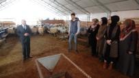 GENEL SAĞLIK SİGORTASI - Çobanlık Akademisi İlgi Görüyor
