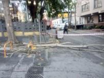 Şişli'de Aşırı Rüzgardan Kırılan Ağaç Dalı, Restoran Çatısına Düştü
