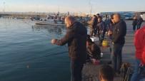 OLTA - Akçakoca Sahili Olta Balıkçılarının Gözde Mekanı Haline Geldi