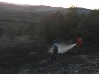 Ormanlık Alanda Çıkan Yangın Söndürüldü