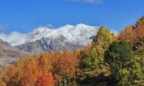 Pülümür Ve Ovacık'a Mevsimin İlk Karı Yağdı