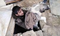 YEŞILDERE - Duyarlı Vatandaş Kuyuya Düşen Köpeği Kurtardı