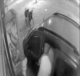 KAYAŞEHİR - (Özel) Başakşehir'de İki Dakikada Bir Marketi Talan Eden Hırsızlar Kamerada
