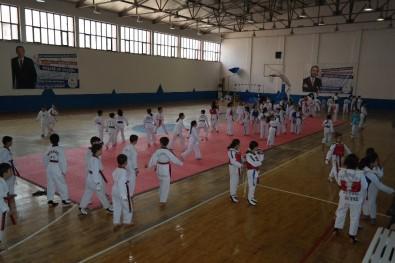 Silifke'de 'Minikler Taekwondo Turnuvası' Düzenlendi