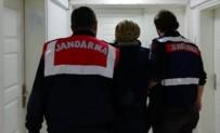 Aydın'da Terör Propagandası Yapan 48 Kişi Hakkında Yasal İşlem Yapıldı