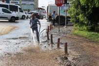 Bodrum'da Yaralar Sarılmaya Başlandı