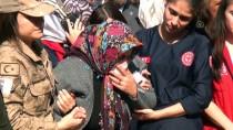 FARUK COŞKUN - Şehit İstihkam Uzman Çavuş Suat Topçu'nun Cenazesi Osmaniye'de Defnedildi