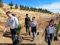 Dicle Elektrik Hatıra Ormanı'nda 300 Fidan Toprakla Buluştu