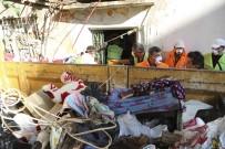 CEMAL ŞAHIN - Efeler Belediyesi, Ayten Teyze'ye Yardım Eli Uzattı