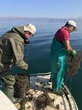 Eğirdir Gölü'ndeki 180 Sahipsiz Kerevit Pinterine El Konuldu