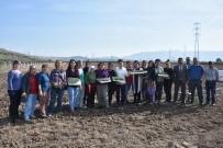 Aliağalı Üretici Kadın Çiftçiler Tarlaya İndi