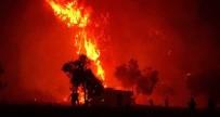ORMAN ALANI - Çanakkale'de 2019 Yılında 52 Orman Yangını Çıktı