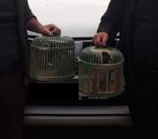 Isparta'da Canlı Mühre Ve Tuzaklı Keklik Avına 3 Bin 304 Lira Ceza