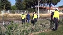 Manisa'da Yük Treni Yaşlı Adama Çarptı (2)