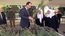 Mardin Cumhuriyet Başsavcılığından Fidan Dikimi