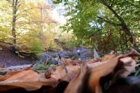 Sonbaharın Renkleri Demirci'de Görsel Şölene Döndü