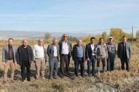 'Tosya Pirinci'nin Coğrafi İşaret Denetimleri Başladı