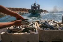 Van Gölü'ndeki Kayıtlı Balıkçı Teknelerine Destek