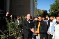 YEŞILDERE - Cizre Denetimli Serbestlik Yükümlülerine 250 Fidan Dağıtıldı