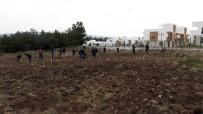 HÜSEYIN KESKIN - DHMİ, Türkiye'deki Havalimanlarına 100 Bin Fidan Dikecek